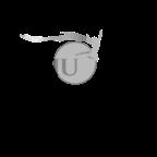 output-onlinepngtools (8)
